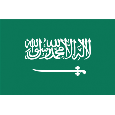 Saudi Arabia international rankings
